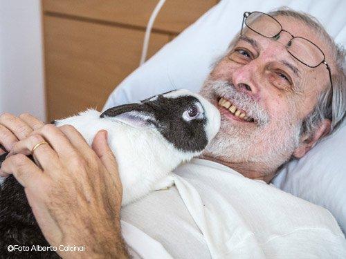 coniglio-da-pet-therapy-spike