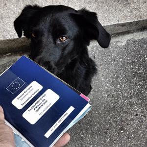 Che figo, anch'io ho il mio passaporto veterinario!