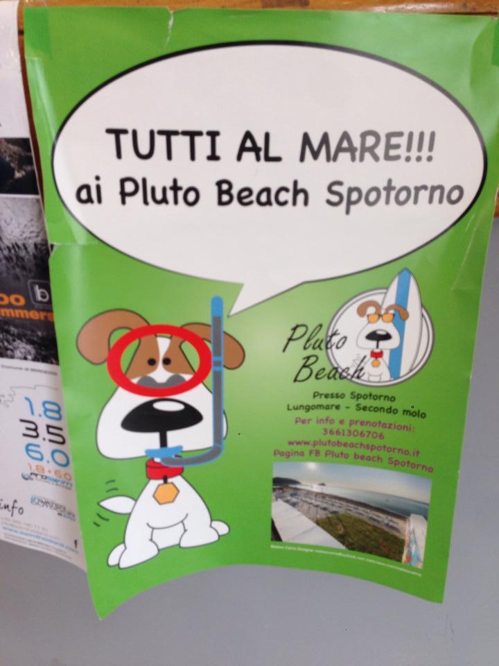 Vacanze con il cane al mare in liguria